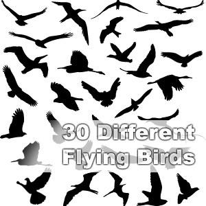 鳥のシルエットベクター素材