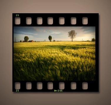 ポジフィルムのPSDファイル