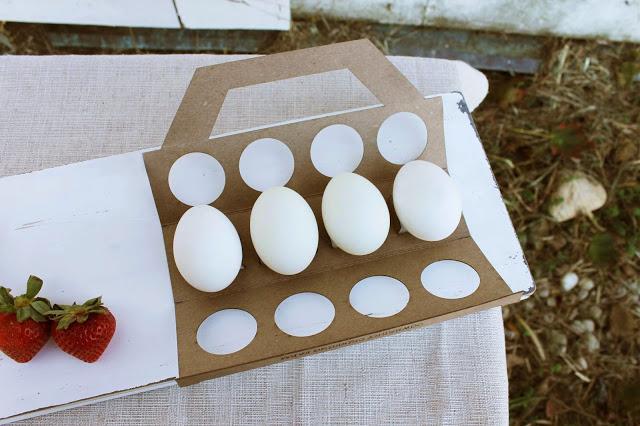 http://www.packagingoftheworld.com/2013/10/cowberry-crossing-farm-student-project.html