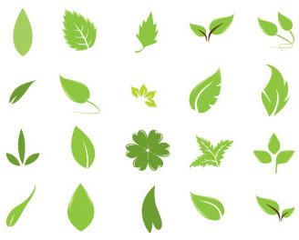 葉っぱのベクター素材
